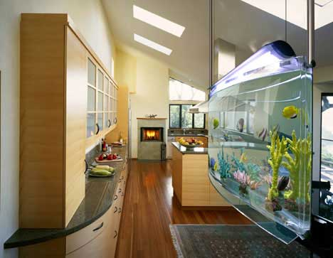 Understanding Home Aquarium | Aquarium Fish Home