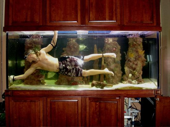 Fish Tank Care – How to Clean Algae | Aquarium Fish Home